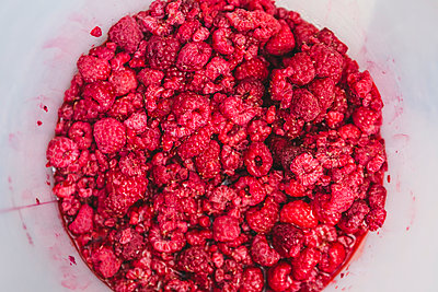 Raspberries for making ice cream - p300m2029947 by Giorgio Magini