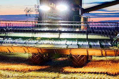 Corn harvest at night - p719m1445920 by Rudi Sebastian