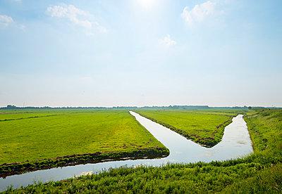 Meadows near Amsterdam - p1132m937646 by Mischa Keijser