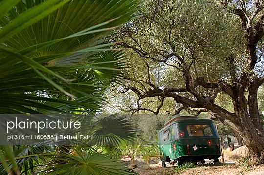 Wohnwagen in einem Olivenhain, Finca Ecologica, Andalusien, Spanien - p1316m1160838 von Bethel Fath