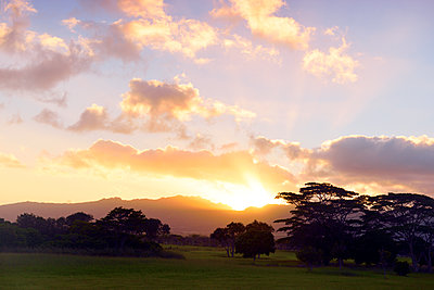 Vanilly Sky über Oahu, Hawaii - p1196m1128169 von Biederbick & Rumpf
