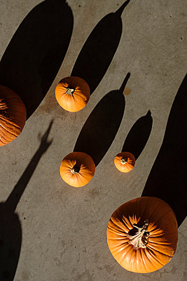 Pumpkins and Shadows - p1262m1184867 by Maryanne Gobble