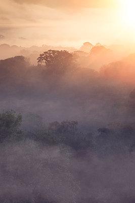 Sonnenaufgang - p1280m1477460 von Dave Wall