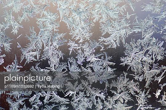 Eisblumen am Fenster - p1169m1032692 von Tytia Habing