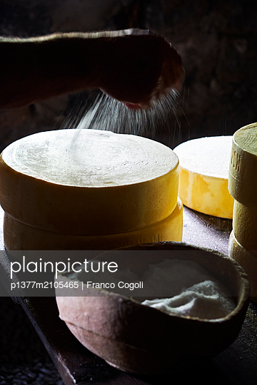 Italy, Piedmont, Verbano-Cusio Ossola district, Alps, Crevoladossola, Caseificio Bravi-Mazzurri (dairy) - Mr Alberto Mazzurri, the owner, in the cellar during the cleaning and salting of the Bettelmatt cheese - p1377m2105465 by Franco Cogoli