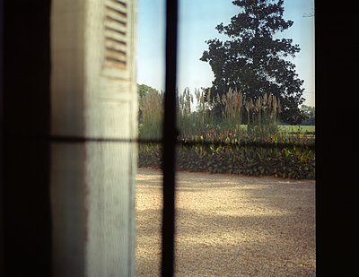 Blick aus dem Fenster - p945m1502136 von aurelia frey