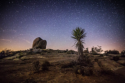 Scenic view of landscape against star field at night - p1166m1182758 by Cavan Images