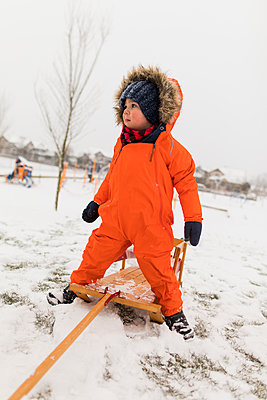 Toddler boy preparing for a sled ride. - p1166m2094575 by Cavan Images