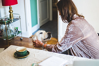 Woman stroking dog while having coffee on dining table at home - p426m2046375 by Maskot