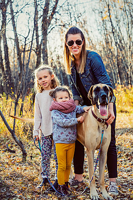 A beautiful mom and her two little daughers walking their Great Dane through the woods in a city park on a warm fall evening; Edmonton, Alberta, Canada - p442m2012183 by LJM Photo