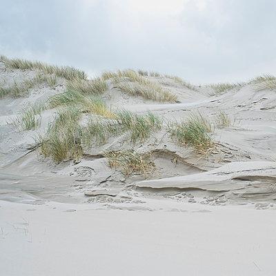 Dunes - p989m940107 by Gine Seitz