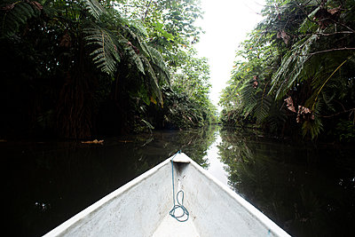 White ship's bow on Napo River amidst trees, Ecuador - p300m2240218 by MORNINGVIEW AGENCY