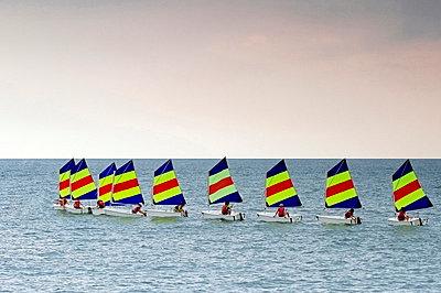 Sailing Optimists - p977m858463 by Sandrine Pic