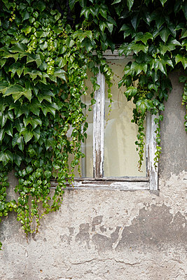 Abandoned - p238m831902 by Anja Bäcker