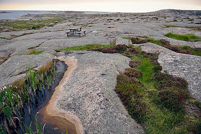 Sweden, Kungshamn, Skerry landscape - p300m2213677 by Biederbick&Rumpf