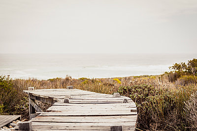 Boardwalk at the coast, Grotto Bay, South Africa - p300m2167094 by Floco Images
