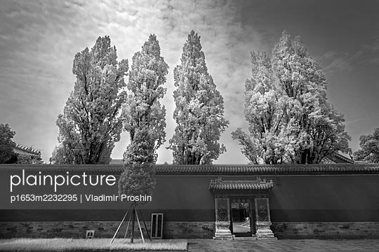 p1653m2232295 by Vladimir Proshin