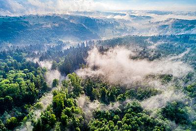 Germany, Baden-Wuerttemberg, Swabian Alb, Aerial view of Schurwald, morning fog - p300m2005393 by Stefan Schurr