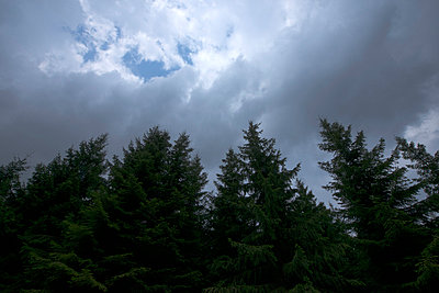 Clouds - p427m859414 by R. Mohr