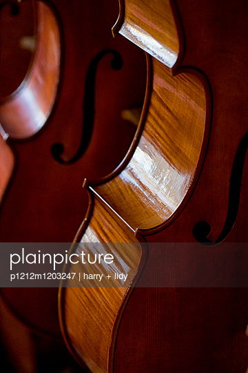 Celli beim Geigenbauer - p1212m1203247 von harry + lidy