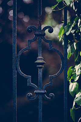 Iron gate - p1088m907753 by Martin Benner