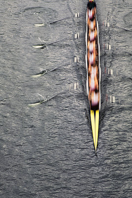 Overhead view of men rowing scull boat during competition on the water off shore in Seattle.  - p1100m1220579 by Mint Images