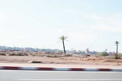 Marrakesh, Shot from a taxi  - p1253m2152629 by Joseph Fox
