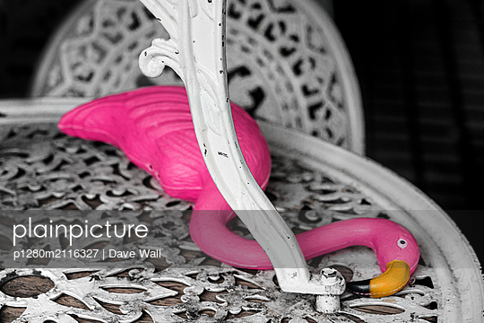 Plastic flamingo on garden table - p1280m2116327 by Dave Wall