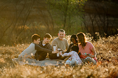 Family toasting drinks while sitting on grassy field at forest - p1166m1530229 by Cavan Images