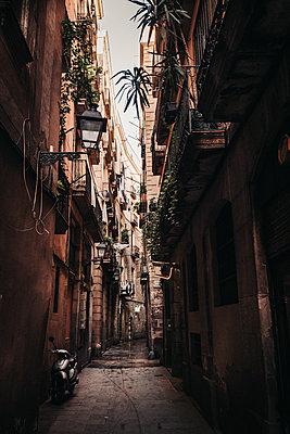 Straße in der Altstadt Barri Gotic von Barcelona - p1497m2071348 von Sascha Jacoby
