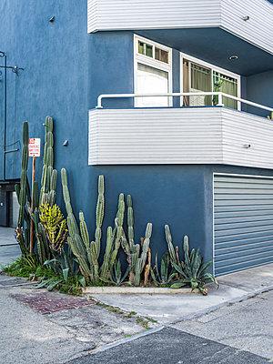 California - p1232m1041105 by Moritz Schmid