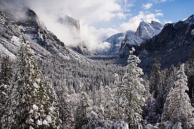 Fresh snow fall on El Capitan in Yosemite Valley, Yosemite National Park, UNESCO World Heritage Site, California, United States of America, North America - p871m1073633f by Christian Kober