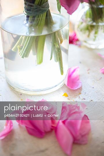 Romance - p454m2192421 by Lubitz + Dorner
