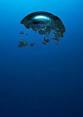 Air bubbles, underwater - p1652m2257765 by Callum Ollason