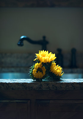 Yellow Flowers in Rustic Sink with Atmospheric Lighting - p1617m2200378 by Barb McKinney