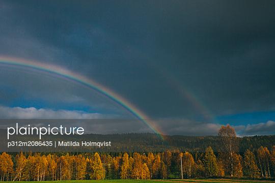Rainbow above forest - p312m2086435 by Matilda Holmqvist