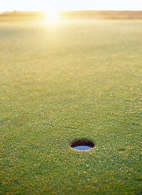 A golf course Sweden. - p31217827f by Elliot Elliot