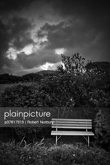 Bench in garden - p37817919 by Robert Norbury