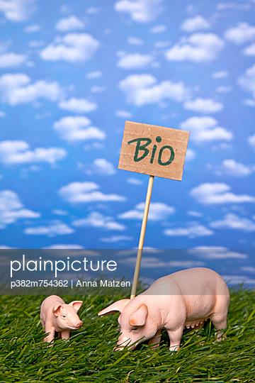 Bio - p382m754362 von Anna Matzen