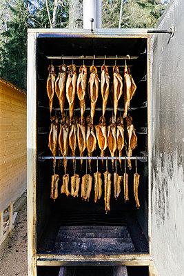 Geräucherter Fisch im Räucherschrank - p728m1093225 von Peter Nitsch