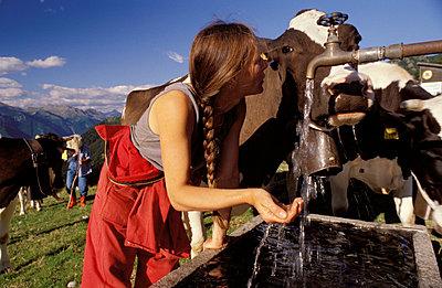 Die Kuh, mein Freund - p0560077 von Birgit Pollak