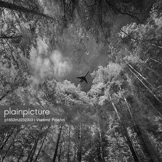 Flugzeug überfliegt eine Lichtung im Wald - p1653m2232303 von Vladimir Proshin