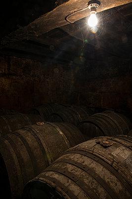 Barrels in winery cellar - p1216m2260522 von Céleste Manet
