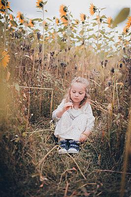Little girl in sunflower field - p1628m2294562 by Lorraine Fitch