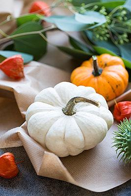 Autumnal decoration, ornamental pumpkins - p300m2042184 von JLPfeifer
