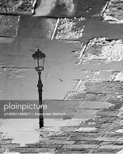 Spiegelung einer Laterne mit Möwe in Venedig - p1493m1585671 von Alexander Mertsch