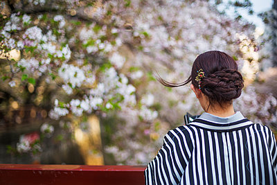 Woman looking at cherry blossoms - p312m2091443 by Pernille Tofte