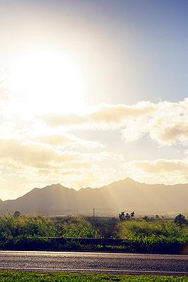 Nachmittagssonne auf dem Kamehameha Highway, Oahu, Hawaii - p1196m1128168 von Biederbick & Rumpf