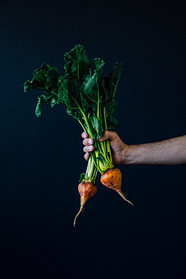 Golden Beets Against Dark Background - p1262m1119984 by Maryanne Gobble