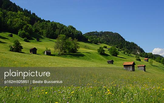 Blumenwiese und Hütten in Österreich - p162m925851 von Beate Bussenius